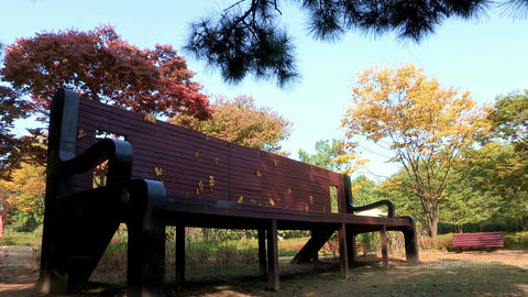 Youngsan Family Park In Seoul, Korea stock footage