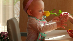 The Baby And The Rose stock footage