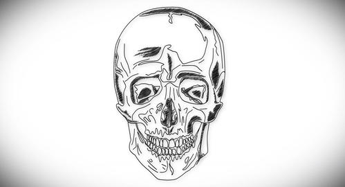 4K Human Skull 03 Front stock footage