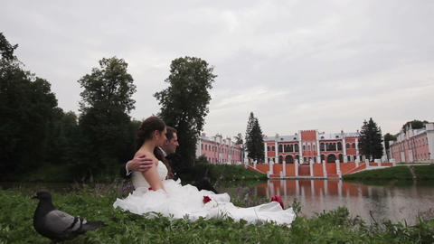 Bride And Groom Are Sitting On Grass In The Park stock footage