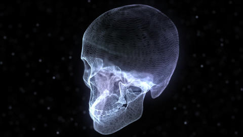 Grid of Human Skull Animation