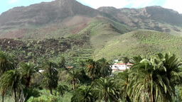 Spain Gran Canary Fataga 005 volcanic mountains and palm trees Footage