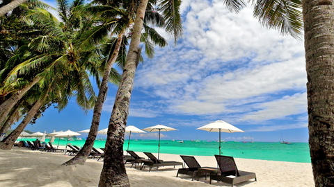 Tropical Beach With Palm Trees, Umbrellas And Chairs For Relaxation. Philippines stock footage
