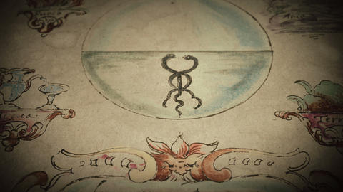 Old texts 012. Page of alchemical manuscript Animation