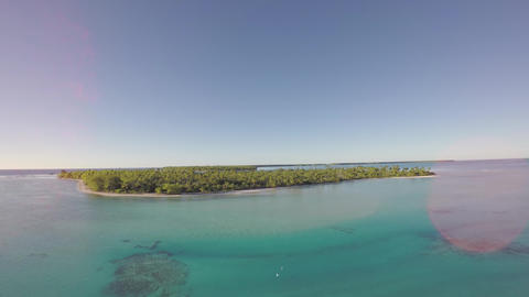 Aerial View Of A Tropical Island And Palm Tree - Tetiaroa, Tahiti, French Polyne stock footage