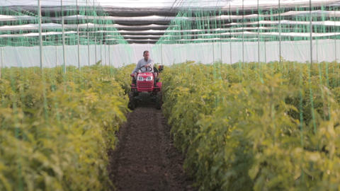 Greenhouse Tractor stock footage
