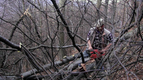 Man Operates A Chainsaw, Which Cut The Branches Of A Tree In The Forest 11 stock footage