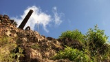 Cannon 08 stock footage