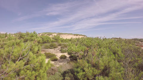 Aerial View Over Ocean Grass Sand Dunes At Sunny Day - Portugal stock footage