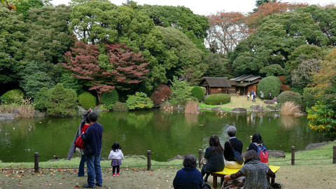 Fall Autumn Garden Park Trees People In Tokyo Japan Asia Footage