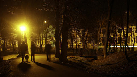 People Walk In The Park At Night By The Light Of Lanterns Timelapse 8a stock footage