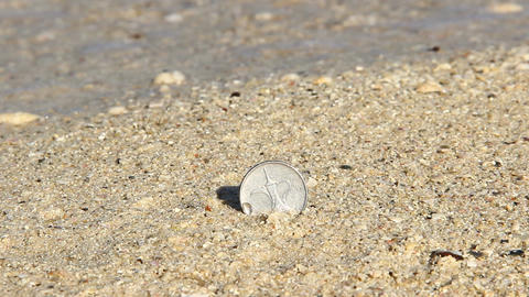 Teapot On One Dirham UAE Coin, Stick Out From Sand, Close Up stock footage