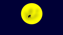 GORILLA Over The Moon stock footage