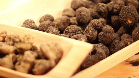 Dark and white truffles in a wooden dish Footage