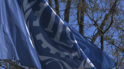 Flag Of UN ILO Waving Close Up stock footage