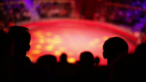 The Silhouettes Of The Audience At The Circus stock footage