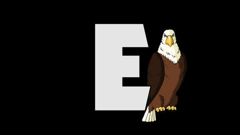Letter E and Eagle (background) Animation
