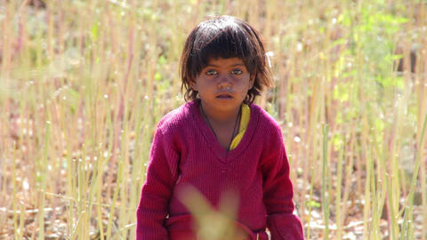Indian Rural Child In The Field stock footage