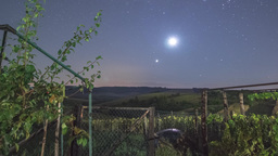 Night Sky Timelapse In A Garden With Rising Moon Footage