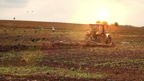 Tractor Cultivates The Soil On Sunset stock footage