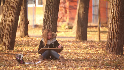 The Girl Sitting On The Ground In The Park, And Paints An Autumn Landscape stock footage