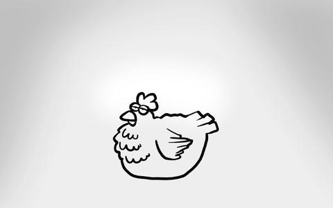 Whiteboard Chicken Drawing Animation