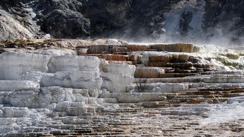 Mammoth Hot Springs Footage