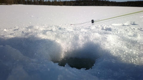 Ice fishing. As biting and caught small perch on forest lake Footage