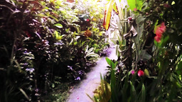Entering into a beautiful tropical garden,Bali Footage
