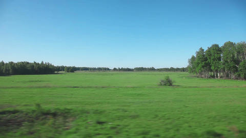 Siberian Landscape - View From Train stock footage
