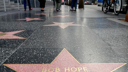 Hollywood Walk of Fame Low Angle Footage