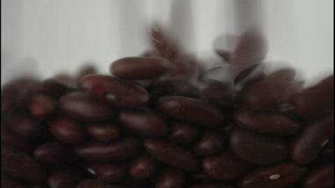 Kidney Beans Falling stock footage