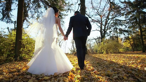 Wedding Couple Walking Pair Sunlight Footage