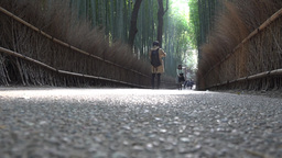 4K Path Of Bamboo/Bamboo Grove Road In Arashiyama Walk Kyoto Japan 竹林の小 stock footage