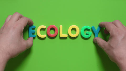 word Ecology Footage