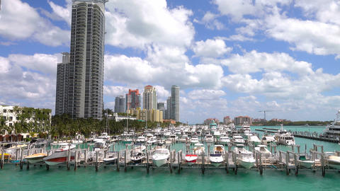 Harbor in Miami Beach on a sunny day Footage
