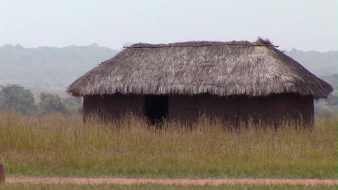 Grass Hut In A Field In Africa stock footage