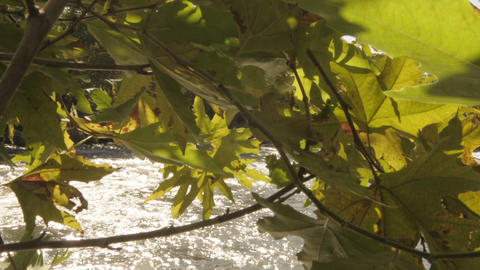 Moving Time Lapse Of Jordan River On A Sunny Day. Cropped stock footage
