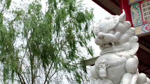 Chinese thai statue lion dragon Footage