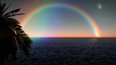 (1033) Ocean Rainbow With Full Moon And Palms stock footage