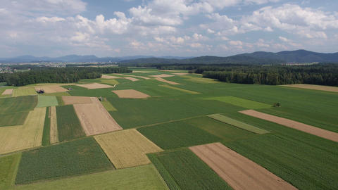 Aerial - Panorama Of Fields With Various Types Of Agriculture stock footage