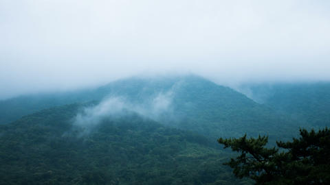 Foggy Mountain Timelapse stock footage