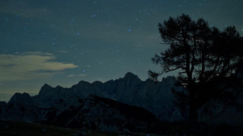 Timelapse - Mountain Range Behind A Tree At Night With Shooting Stars stock footage