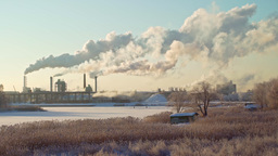 Plywood Factory Fumes Rising During A Cold Winter Day stock footage