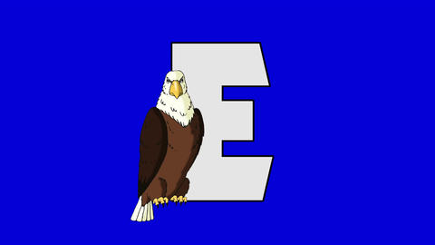 Letter E and Eagle (foreground) Footage
