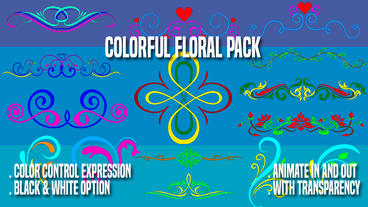 Colorful Floral Pack stock footage