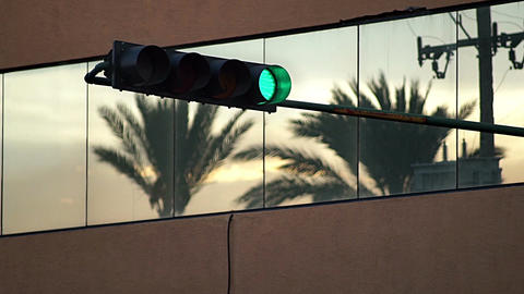 Green Traffic Light And Palm Tree Reflection stock footage