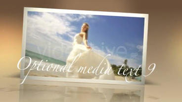 Weddings Particles stock footage
