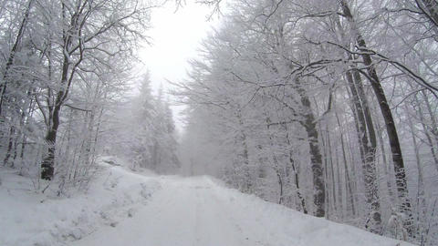 Empty Snow Covered Road In Winter Landscape stock footage
