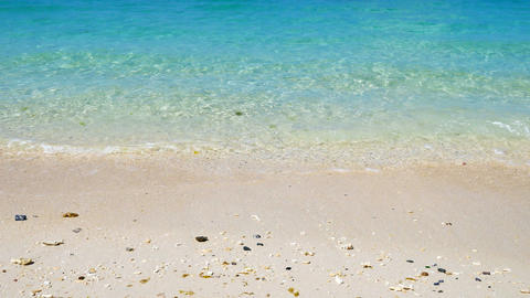 Tropical Sea In Sunny Day stock footage